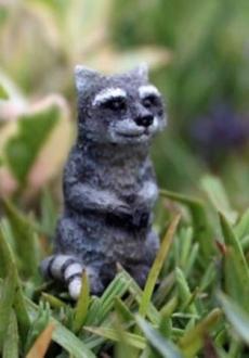 Moe the Raccoon