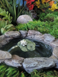 Ponds & Birdbaths